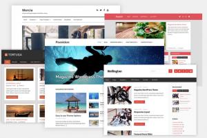 WordPress PBN Re-Designed Sites